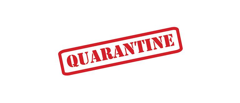 DNV Transport Pty Ltd | Brisbane | Quarantine Services